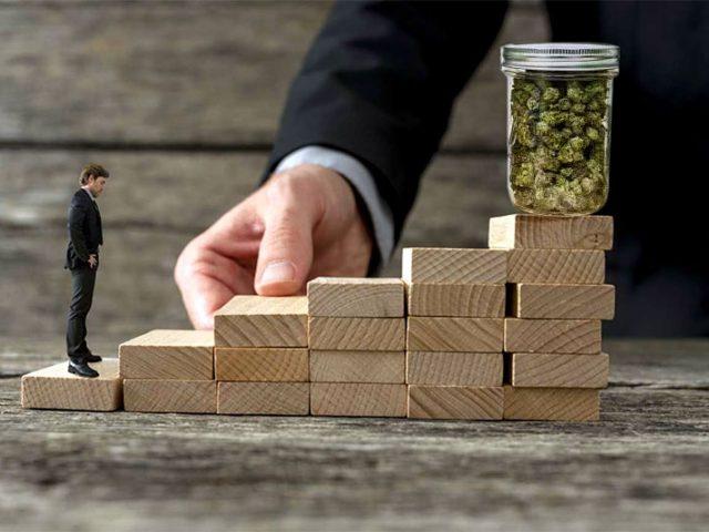 La cannabis como opción de inversión