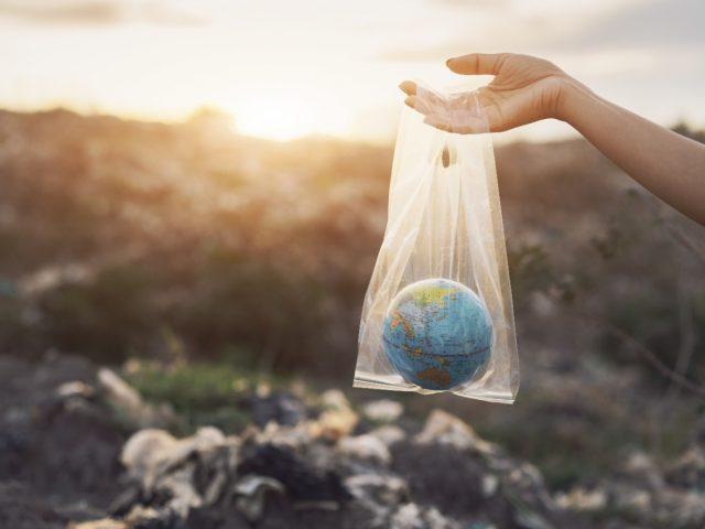La revolución ecológica llegó para quedarse