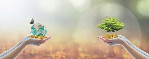 ESG: el que se preocupa, gana